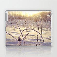 Alaskan Snowfall Laptop & iPad Skin