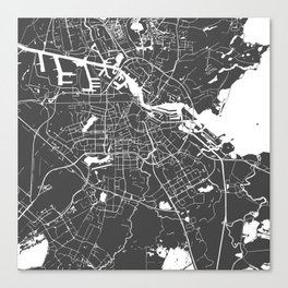 Amsterdam Gray on White Street Map Canvas Print