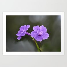 Flowerinas Art Print