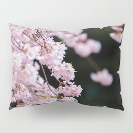 Japanese Cherry Blossoms Pillow Sham