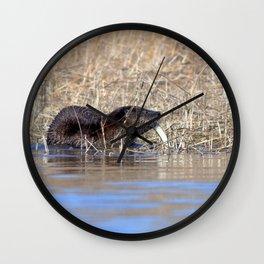 Watercolor Otter 15, Janes Island, Maryland Wall Clock