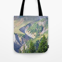 SWIFT CREEK HEADWATERS BELOW TABLE MOUNTAIN Tote Bag