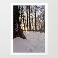 up the snowy path Art Print