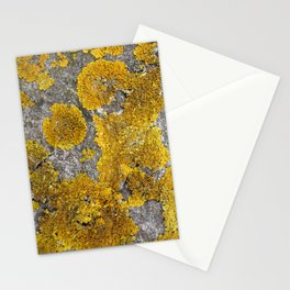 Lichen Stationery Cards