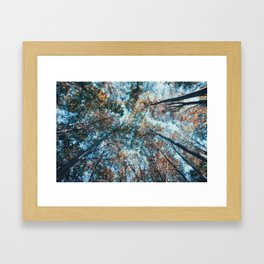 look up 02 Framed Art Print