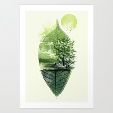 Live in Nature Art Print