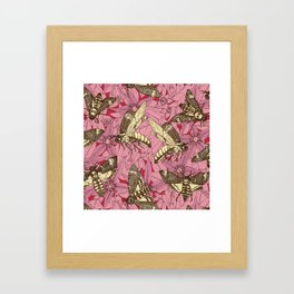 Death's-head hawkmoth rose Framed Art Print