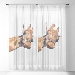 Giraffe portrait Sheer Curtain