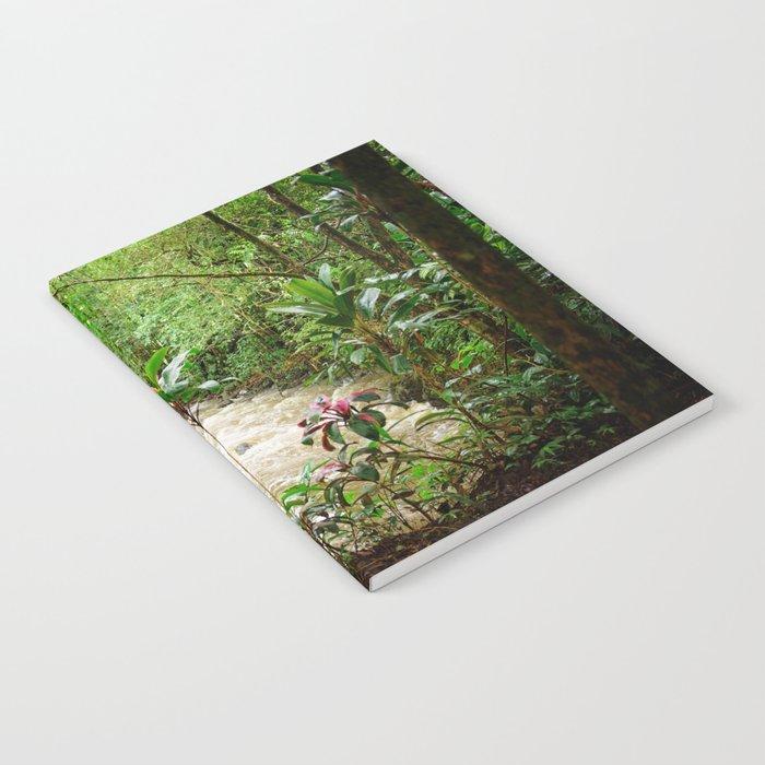 Deep into the Rainforest Notebook