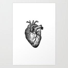Vintage Heart Anatomy Art Print