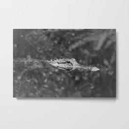 Loop Road Gator  Metal Print