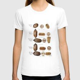 Nuts - Fruit Illustration T-shirt