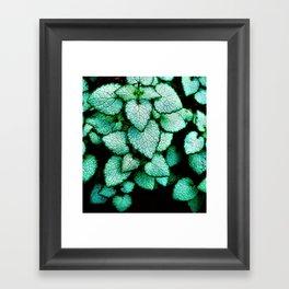 Mint Heart Leaves Framed Art Print