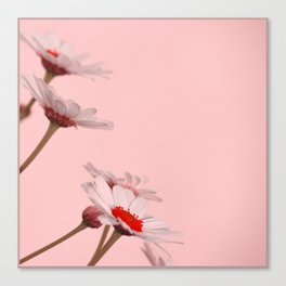 Flower in Chinese mood Canvas Print