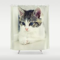 cat coquillette Shower Curtains featuring Cat by Falko Follert Art-FF77