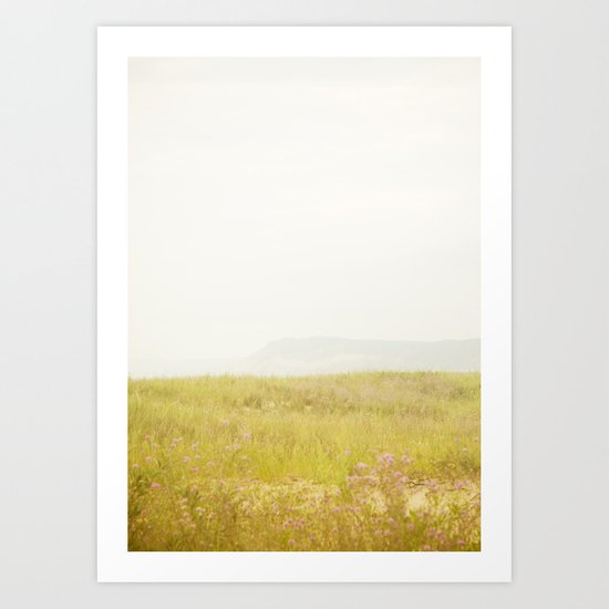 Wild Flowers Lake Michigan South Manitou Art Print