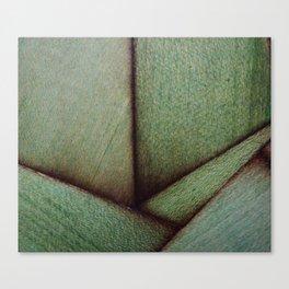 Beautiful Unique maple green wood veneer design Canvas Print