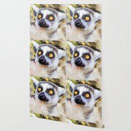 Lemur #lemur #animals Wallpaper