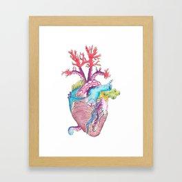 Home II: Marine Life Framed Art Print