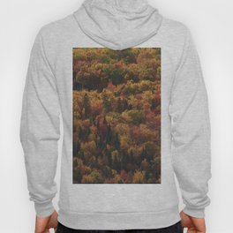 Landscape in Canada - Autumn Hoody