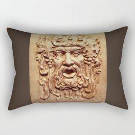 Face From a Fountain Rectangular Pillow