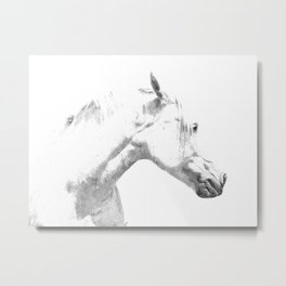 White Horse Profile Metal Print