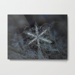 Real snowflake macro photo - Leaves of ice Metal Print