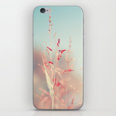 Warm Breeze iPhone & iPod Skin