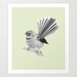 Piwakawaka   NZ Fantail Art Print