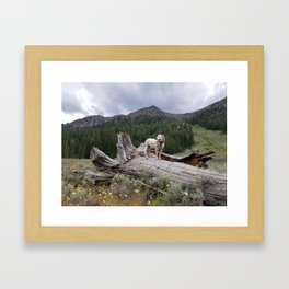 Charlotte in Muldoon Canyon Framed Art Print