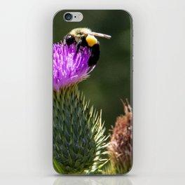 Sweet Nectar iPhone Skin