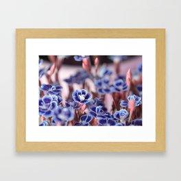 She Blue Framed Art Print