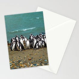 Otway Sound Penguin Colony - Chile Stationery Cards