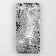 Monochrome Snow Trees iPhone & iPod Skin