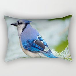 Blue Jay  in Winter Pine Tree Rectangular Pillow