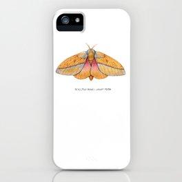 Bisected Honey Locust Moth (Sphingicampa bisecta) iPhone Case
