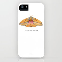 Bisected Honey Locust Moth (Sphingicampa bisecta) iPhone Case
