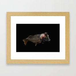 The Swamp Fish Witch Framed Art Print