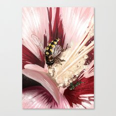 Wasp on flower 7 Canvas Print