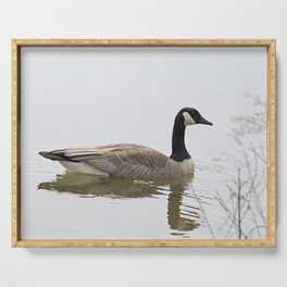 Canadian Goose Swimming Serving Tray