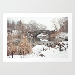 Central Park Winter Ducks Art Print