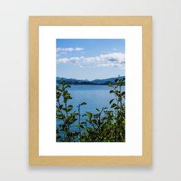 Plant View Framed Art Print