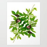 Blueberry Branch in Spring Art Print