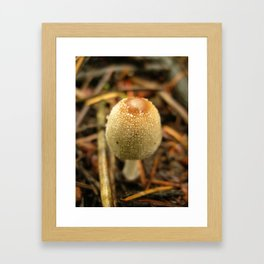 Emergent Coprinus Framed Art Print