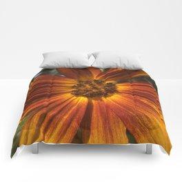 Sunburst Sunflower Comforters