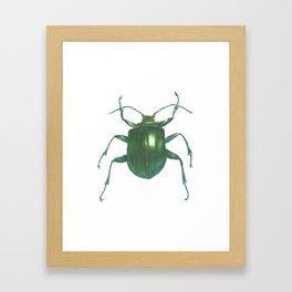 Big Beetle Framed Art Print