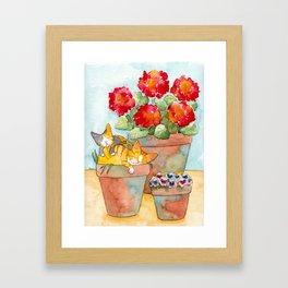Sleeping Kitties and Geraniums Framed Art Print