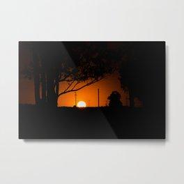 Pampas Sunset. Metal Print
