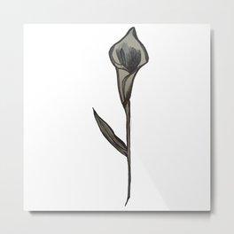 Single Stem Calla Lily Illustration Metal Print