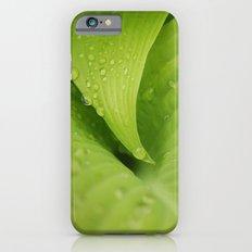 Dew Drops iPhone 6s Slim Case